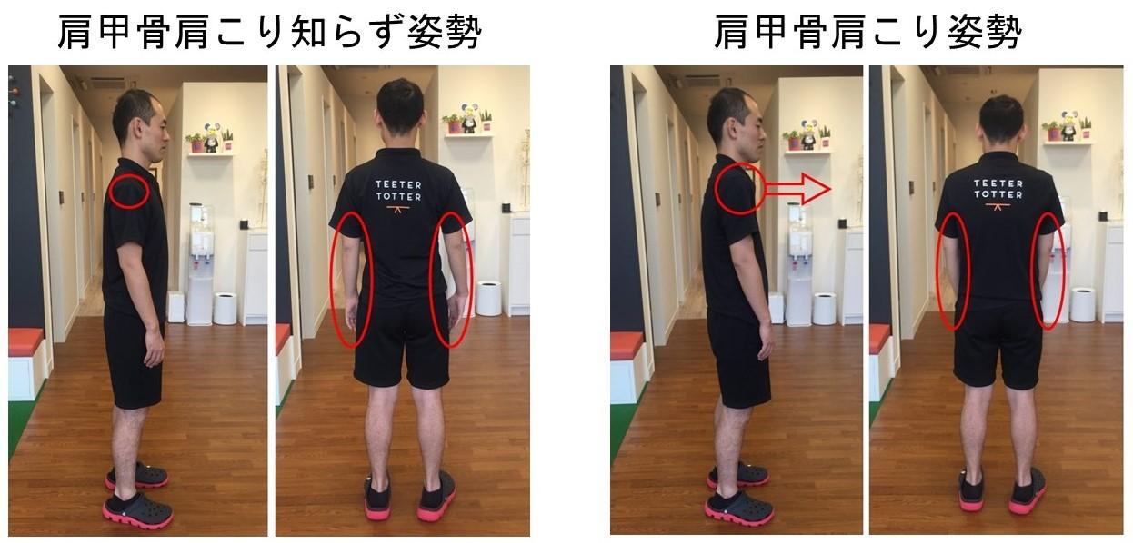 肩こり 猫背 改善予防 マッサージ エクササイズ トレーニング7