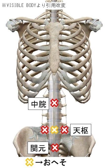 忘年会 胃腸不調 胃もたれ 下痢 疲労 ストレス 暴飲暴食2 (2)