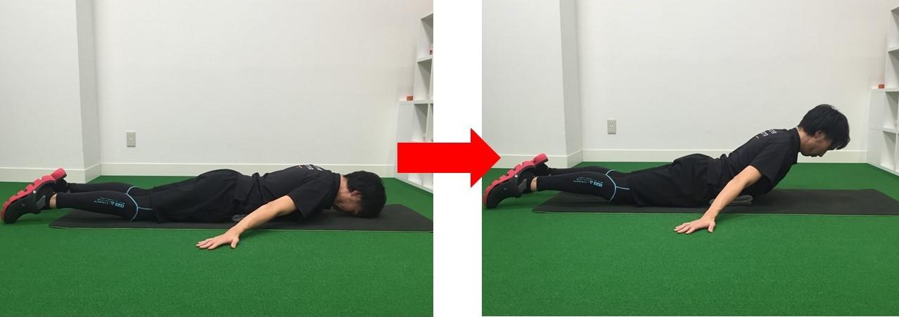 理想的な姿勢 背筋 体幹 (2)